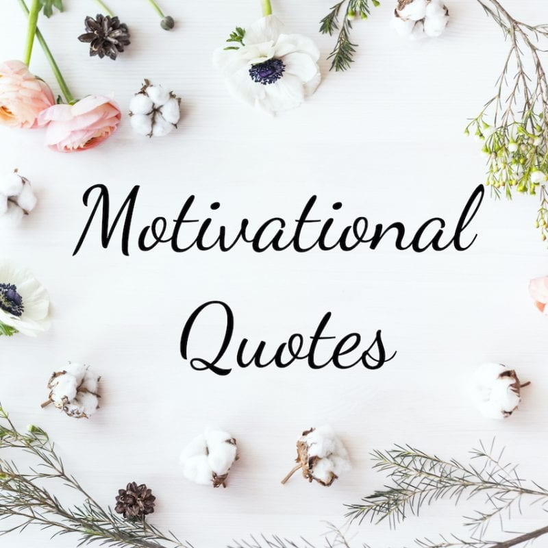 150+ Motivational quotes to help you reach your full potential!